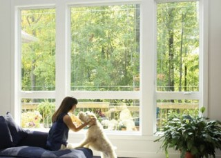 Your Absolute Guarantee of Quality windows