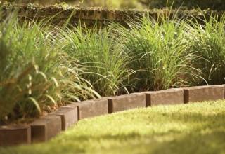 Landscape Edging Capital Improvement